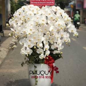 chau-lan-ho-diep-trang-Phu-Quy-Tai-Loc-20-290520-00