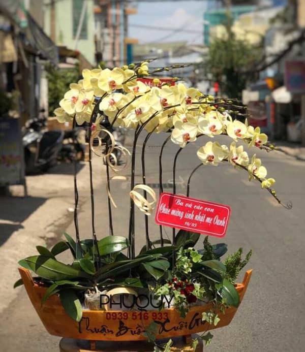 chau-lan-ho-diep-vang-thuan-buom-xuoi-gio-9a-040620-01