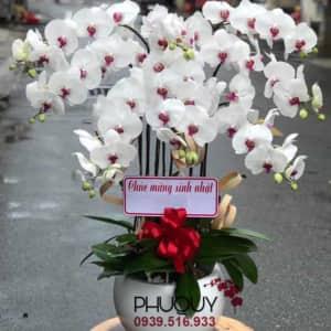 chau-lan-ho-diep-trang-van-su-may-man-8-120621-01